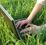 laptop work on lawn