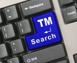 enter TM search on computer