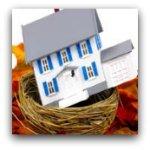 House in birds nest