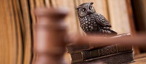 owl and gavel