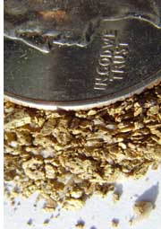 gold nuggets and coin