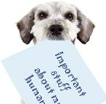 dog with info sheet in mouth