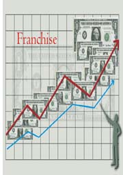 graphs showing franchise sales